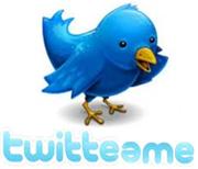 Un Tweet en Twitter
