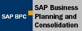 Artículos sobre SAP BPC