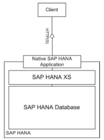 SAP HANA como plataforma de aplicaciones nativas