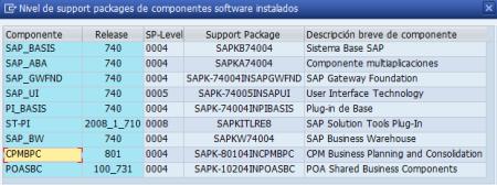 Datos de un sistema SAP BPC 10.0 NW sobre SAP NW 7.40