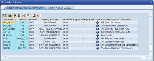 SAP BPC 10.1 NW Componentes sugeridos para una instalación estable de la interfaz Web
